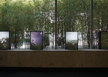 TAF - რას ვნახავთ თანამედროვე ხელოვნების ბაზრობაზე?