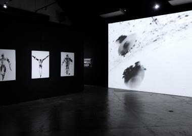 ERTI Gallery-ს პირველი კულტურული პროექტი სინგაპურში