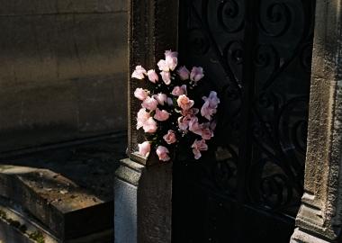Paris Pink- გიორგი ნებიერიძის ფოტოპროექტი მკერდის სიმსივნის შესახებ